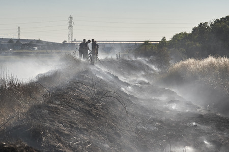 damping: Fire crew damping down after a blaze in a crop field. Rochford, Essex Stock Photo