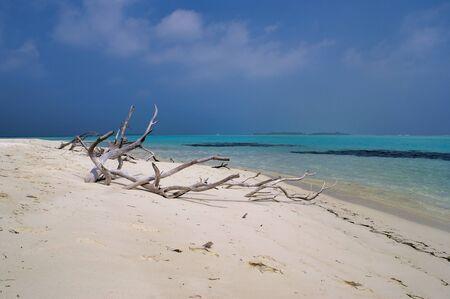 Picnic Island Near Maafushi Island Maldives