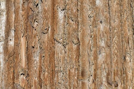 Salt stain on planks of wood, board texture. 写真素材