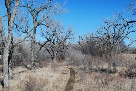 lonliness: Path Lest Taken Stock Photo