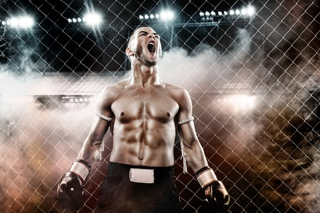 Sportsman Muay Thai boxer celebrating flawless victory in boxing cage. Background with lights and smoke. Copy Space. Sport concept.