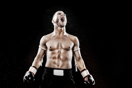 Sportsman Muay Thai boxer celebrating flawless victory in boxing cage. Isolated on black background with copy Space..