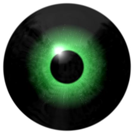 Texture green Eye with black place, 3d animal eyeball