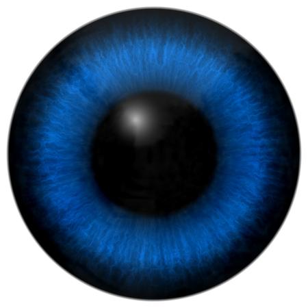 Blue eye texture with black fringe and white background Stock Photo