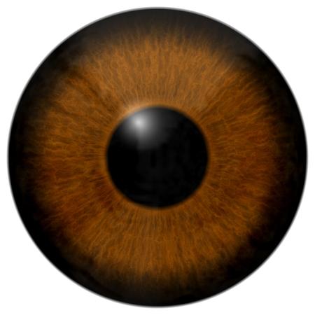 Braune 3d Augenbeschaffenheit mit schwarzem Rand und weißem Hintergrund