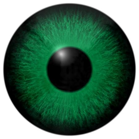 Green Eye 3d, alligator eye, texture Stock Photo