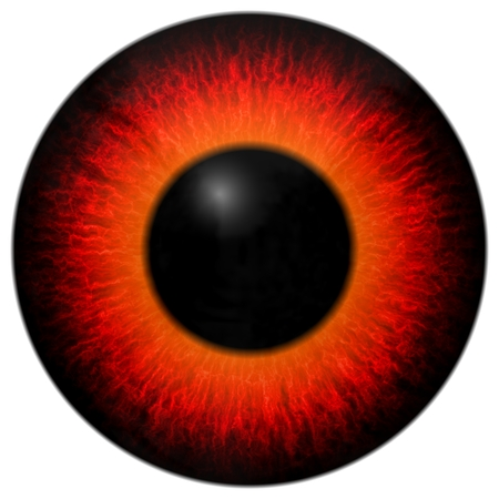 Animal red eye with white background, 3d red and orange eye