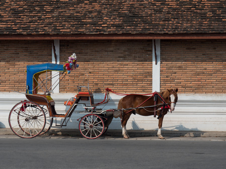 carriages: Horse carriages