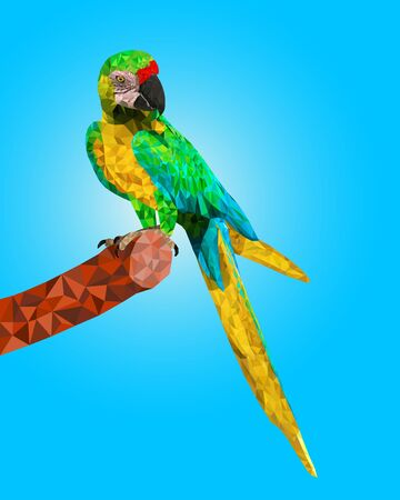 colorful macaw birds with polygonal vector style Ilustrace