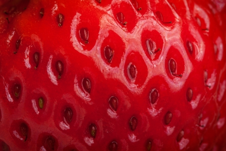 closeup detail of a red strawberry showing skin texture and seeds