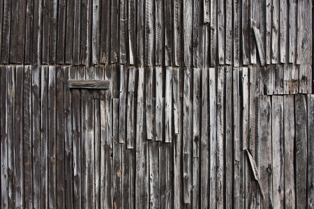 ribbed: strips of aged dry old wood grey in color
