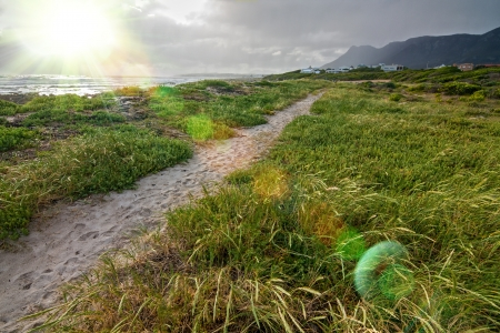 sandy beach pathway through green grass blowing in the wind Stock Photo