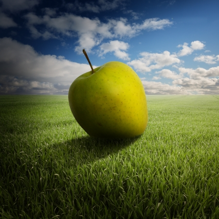 big apple on the field