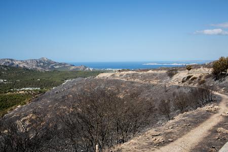 Dammage after Burn Forest  Marseille La Gineste
