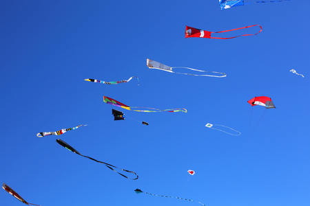 Colorful kites fill the sky