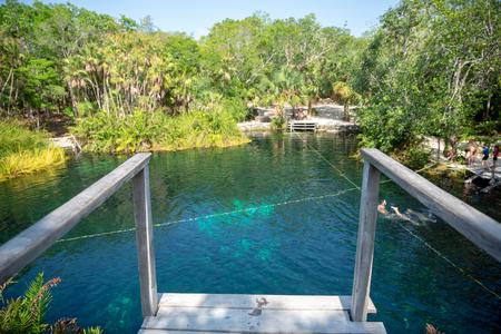 Beautiful Cenote in Riviera Maya in Mexico City, Yucatan Cenote Cristalino 스톡 콘텐츠