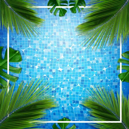 Summer card illustration. Top view of summer pool with palm and tropical leaves background Stock Photo