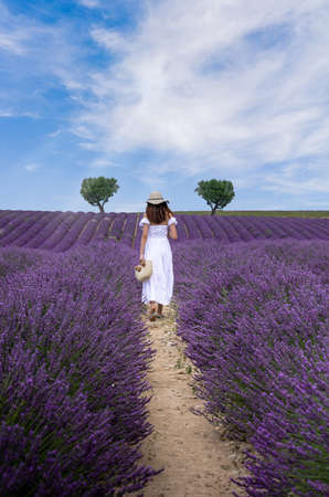 Woman with long white dress walking on lavender field in Provence, France