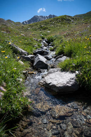 beautiful little stream of water in mountain - French alps in sunny summer day
