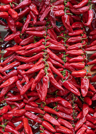 Ezpeleta, red hot peppers of Espelette drying on basque house wall