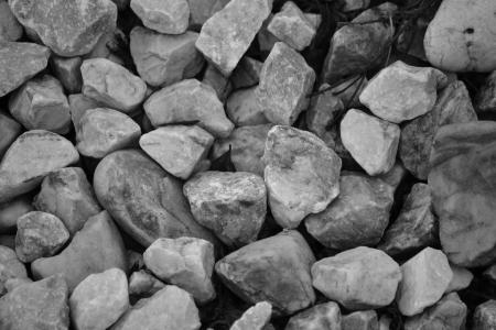 Patch of rocks