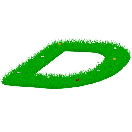 majuscule: Capital letter D made of grass and flowers, viewed from above right