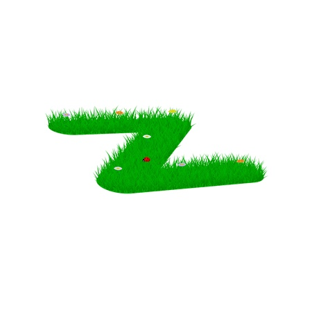 Small letter z made of grass and flowers, viewed from above left