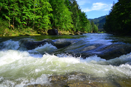Rapid river is flowing between the stones in Carpathian mountains. Colorful landscape of river, forest and mountains. Ukraine