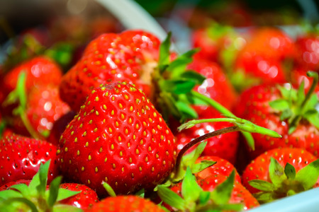 Freshly picked ripe juicy strawberries in a basket