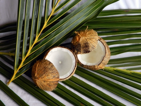 Two coconuts with the tops removed to be used as drinking  glasses  photo