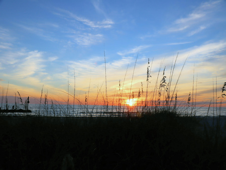 Viewing a sunset over the Gulf of Mexico through seagrass