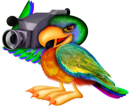 Parrot bedrijf video recorder Stockfoto