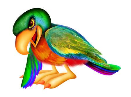 Parrot naar beneden wijst