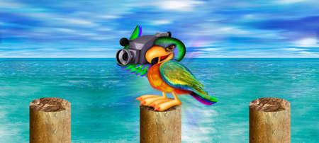 Parrot met video recorder op dok