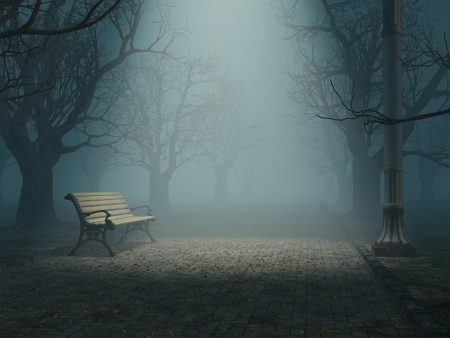 spooky tree: lonely bench in misty park