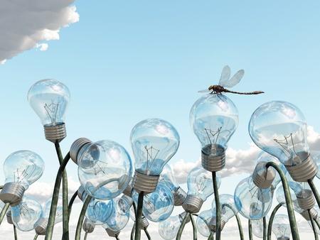 ideas brillantes: bombilla de campo