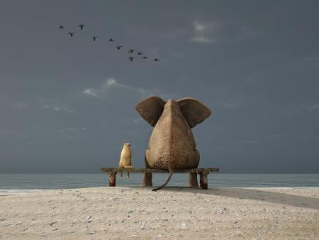 elefant: Elefant und Hund sitzen auf einem verlassenen Strand Lizenzfreie Bilder