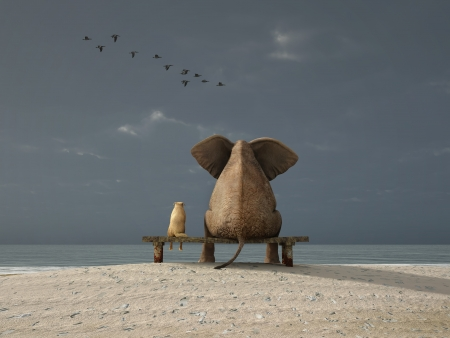 large bird: elephant and dog sit on a deserted beach