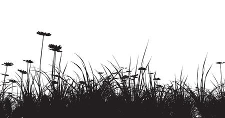 prato e cielo: campo in erba con la camomilla Vettoriali