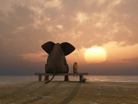 animals together: elephant and dog sit on a summer beach