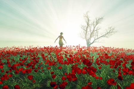 Woman on the poppy field photo
