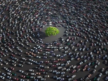car traffic: green tree surrounded by cars