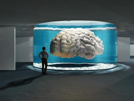 genius: super brain Stock Photo