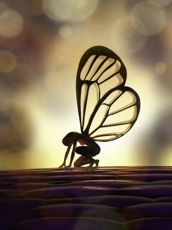 fairy butterfly 免版税图像