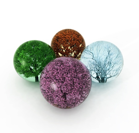 trees of four seasons in the drops