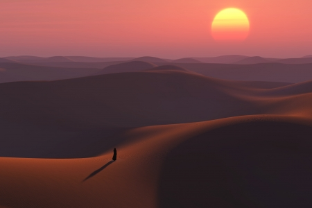 wanderer in the desert photo