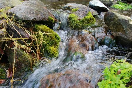 source: Source between stones Stock Photo