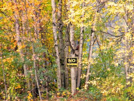no trespassing: no allanamiento woods Foto de archivo