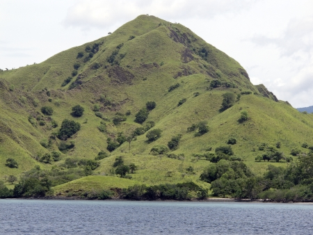 komodo island: Komodo Island, Indonesia, March 2011