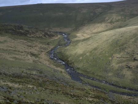 devon: Tavy Cleave, Dartmoor, Devon